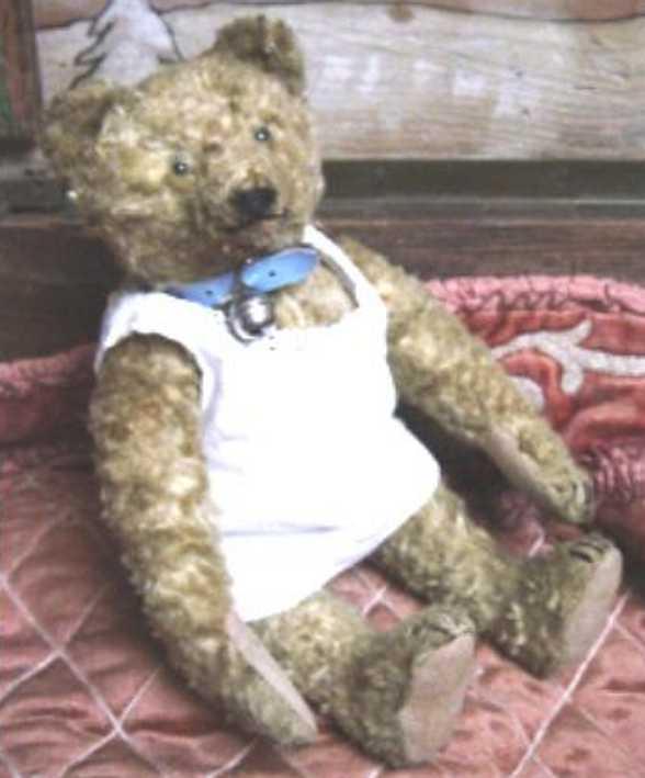 Steiff Teddy aus Kunstseidenplüsch