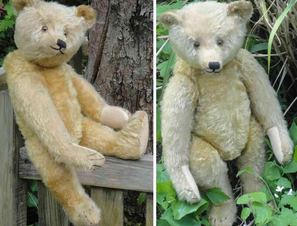steiff teddy buckelbaer mit langnase